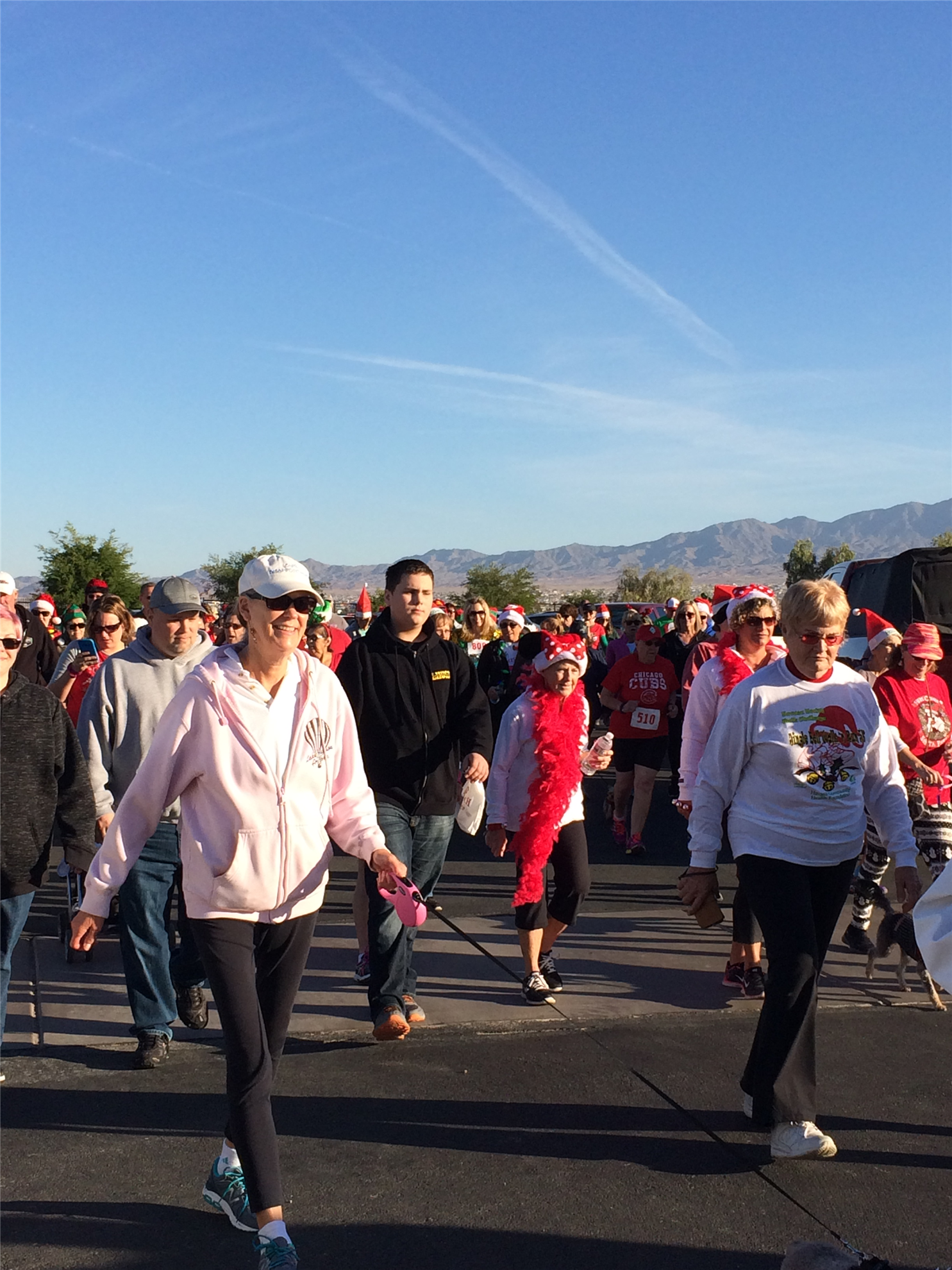 Walkers at 2017 Jingle Bell Walk