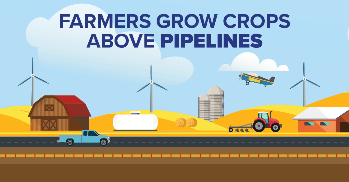 Farmers Grow Crops Above Pipelines
