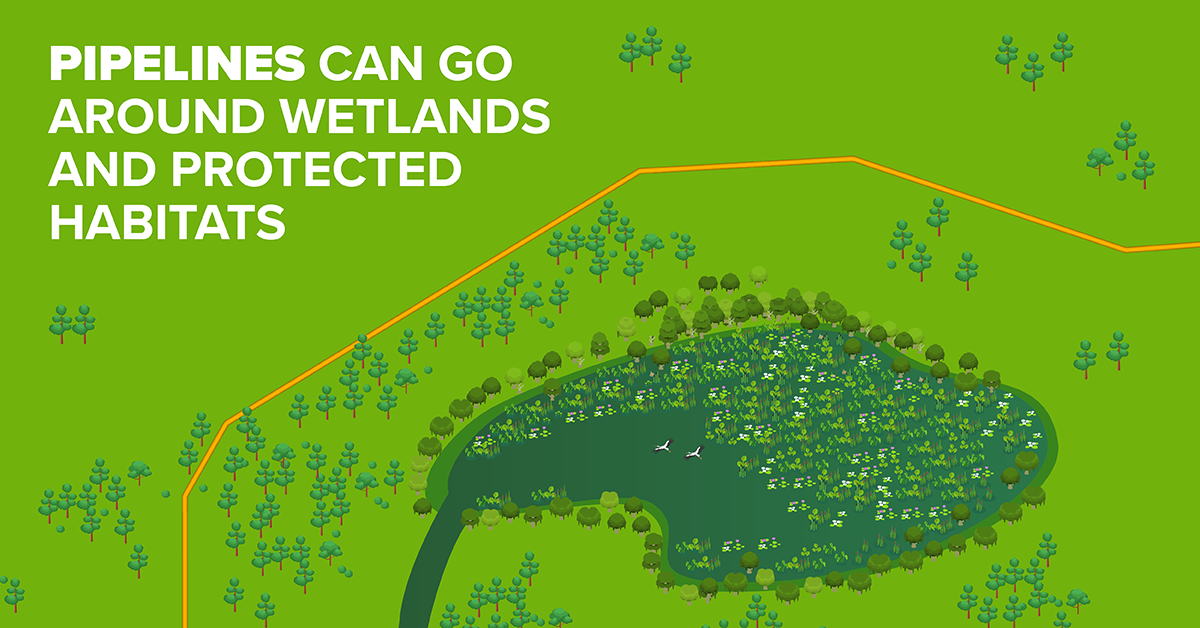 Pipelines Can Go Around Wetlands and Protected Habitats